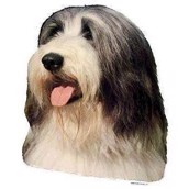 Klistermærke, Bearded Collie