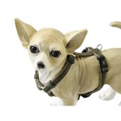 Dog Gone smart sele, Oliven/Khaki, Medium