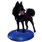 FitPAWS Balance Disc + DVD