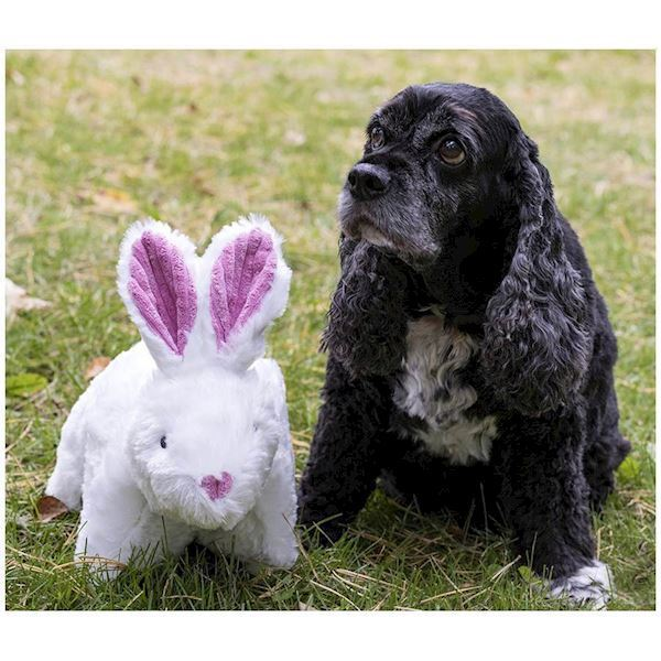 N/A – Hugglehounds knot-less squooshie bunny fra mypets.dk