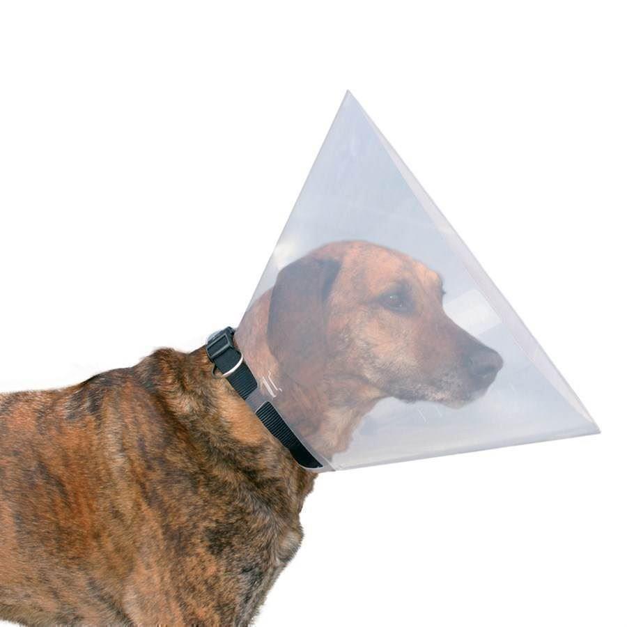 hund slikker skærm