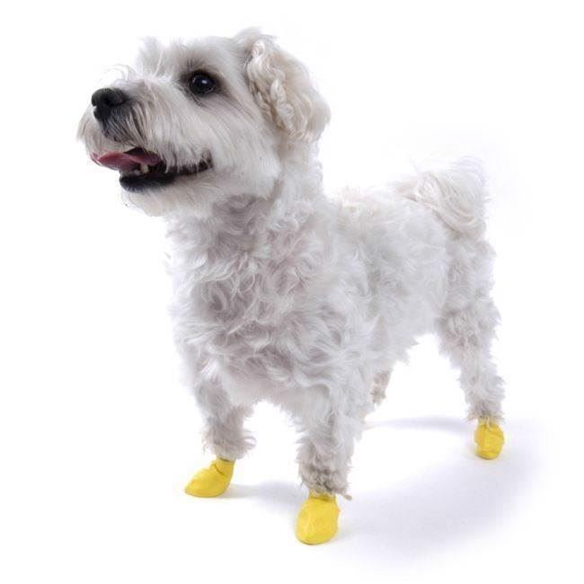 Hundesko