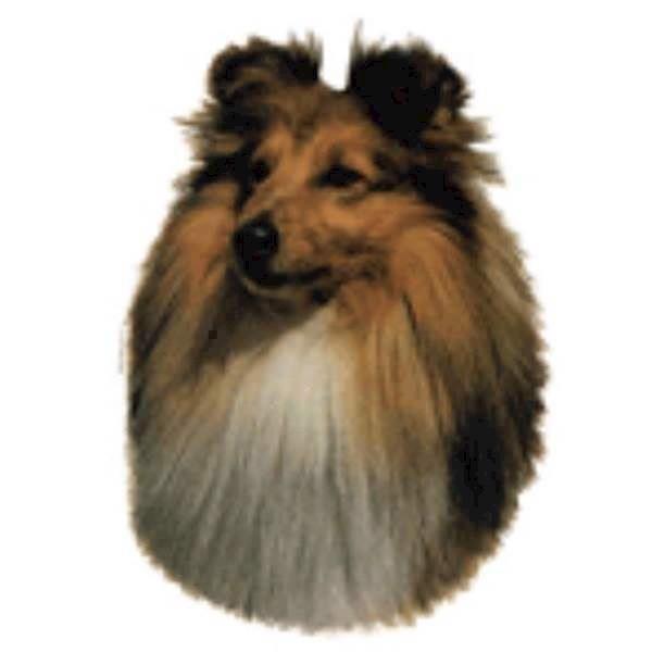 Klistermærke, shetland sheepdog fra N/A fra mypets.dk