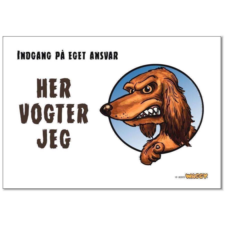 N/A Waggy her vogter jeg skilt, ruhåret gravhund på mypets.dk