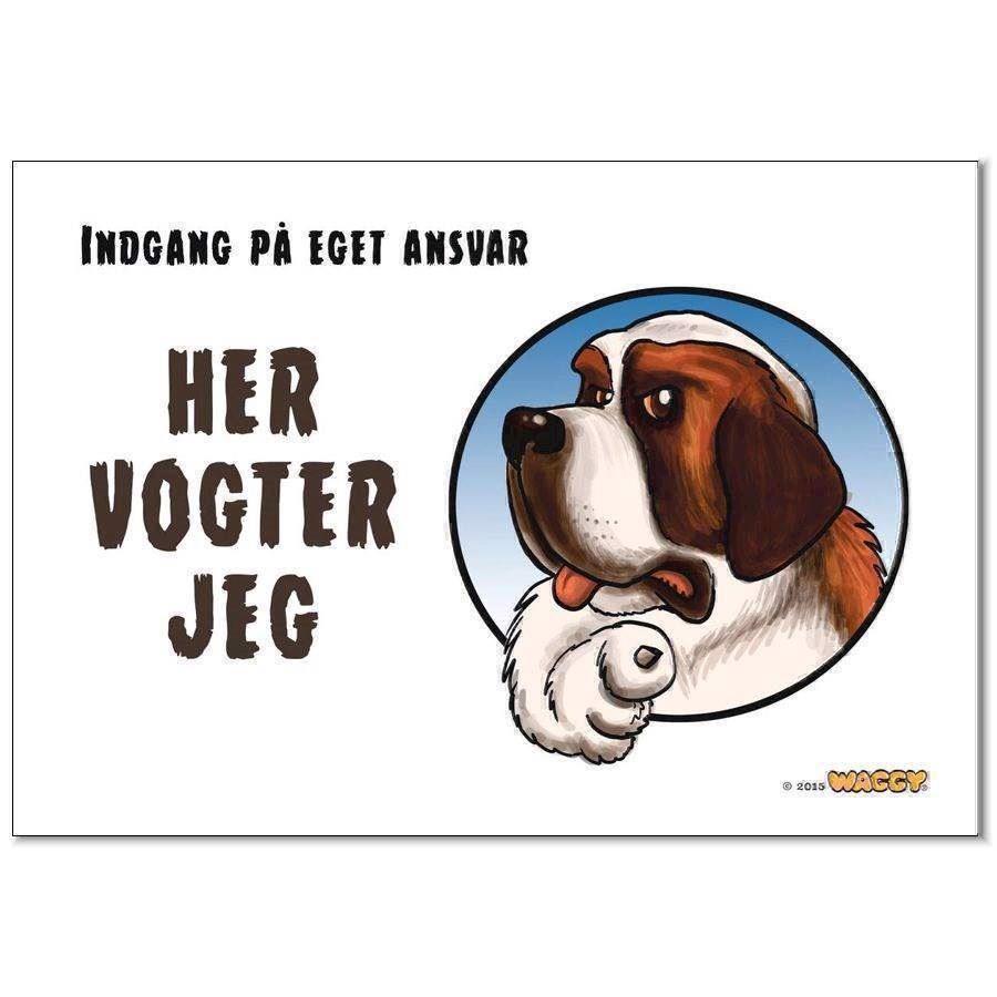 Waggy her vogter jeg skilt, sankt bernhard fra N/A fra mypets.dk