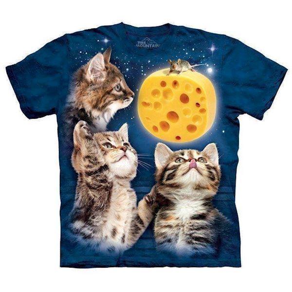 N/A – Three kitten cheese moon på mypets.dk