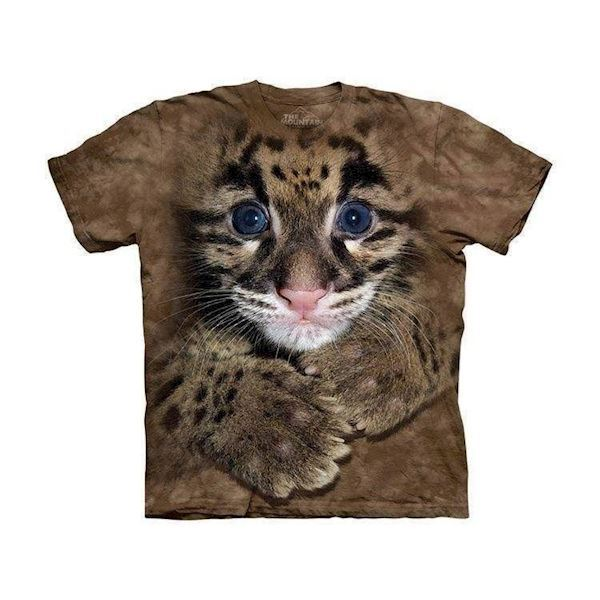 N/A – Clouded leopard cub fra mypets.dk